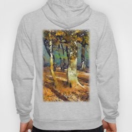 Drama in the Forest and light spills around the trees. Hoody