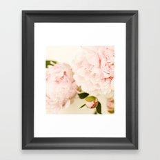 Peony No.4 Framed Art Print