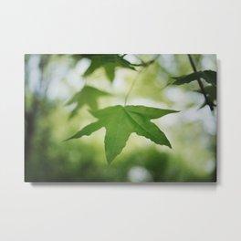 Spring Green Metal Print