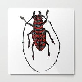 Striped Beetle Metal Print