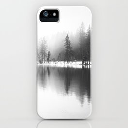 Rhythm of Nature iPhone Case