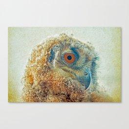 PROF-OWL Canvas Print