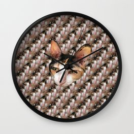 my cat (boring edition) Wall Clock