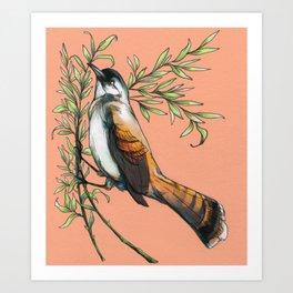 Coraya Wren Art Print