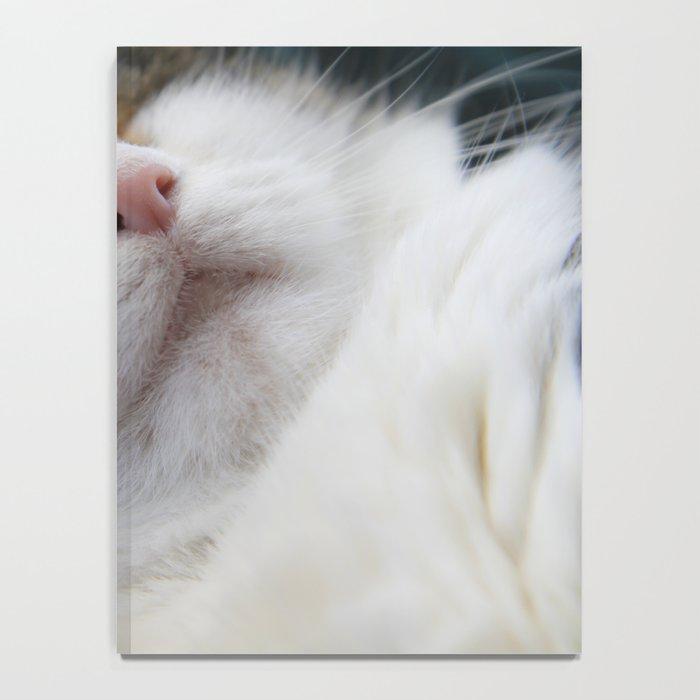 Cat I Notebook