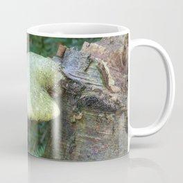 Woodland Plants Coffee Mug