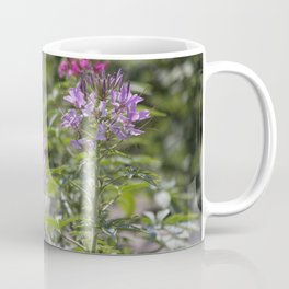 Longwood Gardens - Spring Series 168 Coffee Mug