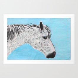 Alvero Stallion Art Print