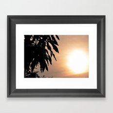 Mango Framed Art Print