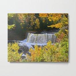 Autumn Painted Falls Metal Print