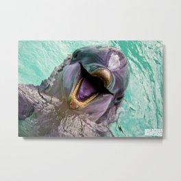 Dolphin Smile Metal Print