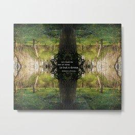 A Dream Within A Dream Metal Print