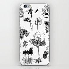 All the wild iPhone & iPod Skin