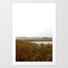 The Salt Marsh Art Print