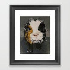 Toby the Guinea Pig Framed Art Print