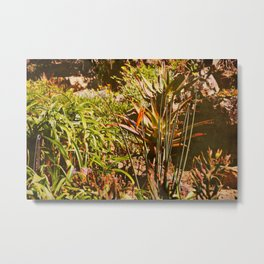 vintage garden in a hot sunny summer day Metal Print