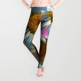 Colorful Daisies Leggings