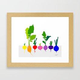 Raddish Framed Art Print