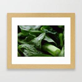 Dark Leafy Geen Vegetables Framed Art Print