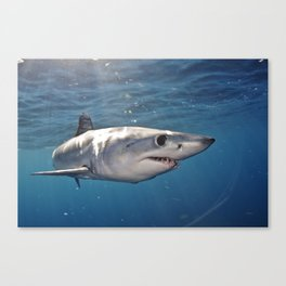 What Big Eyes You Have Canvas Print