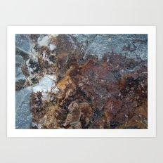 Stone 3 Art Print