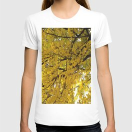 Liquid Amber Autumn Vibes Abstract T-shirt