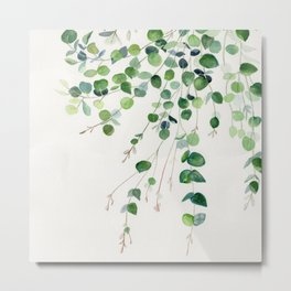 Eucalyptus Watercolor Metal Print