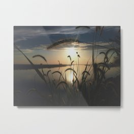 Through the Tall Grass Metal Print