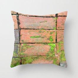 Bricks Walkway Throw Pillow