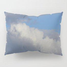 Bowl Of Light Pillow Sham