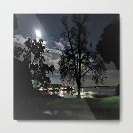 In The Moon Light Metal Print