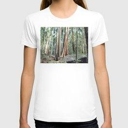 Curtis Falls Rainforest T-shirt