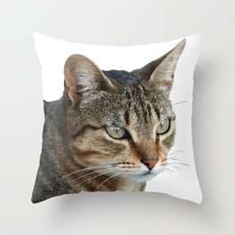 Stunning Tabby Cat Close Up Portrait Isolated Throw Pillow