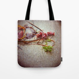 Sea Ranch seaweed 2 Tote Bag