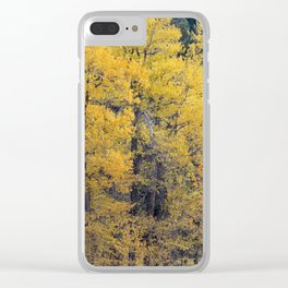 Cottonwood Creek Clear iPhone Case