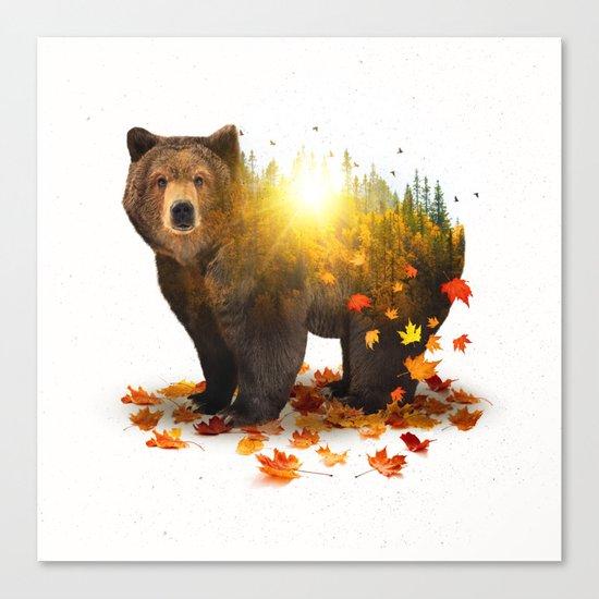 Equinox | Bear Canvas Print