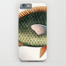 Illustrated Tropical Parrot Fish Game Fish Identification Chart iPhone Case