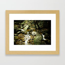Vintage Forest Framed Art Print