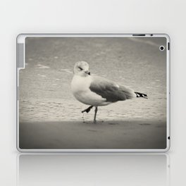 Beach Bird Laptop & iPad Skin