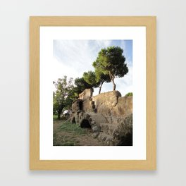 Roman Aqueduct Framed Art Print