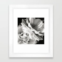 Essence Framed Art Print