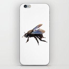 Violet carpenter bee species xylocopa violacea iPhone Skin