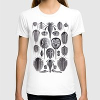 geology T-shirts featuring Trilobites and Fossils by Ernst Haeckel by Yak Lab