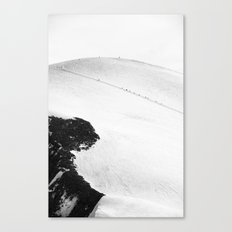 Ant Marching Canvas Print