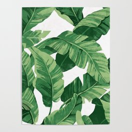 Tropical banana leaves IV Poster