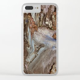 Watercourse Clear iPhone Case