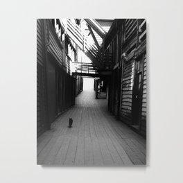 Back Alley cat Metal Print