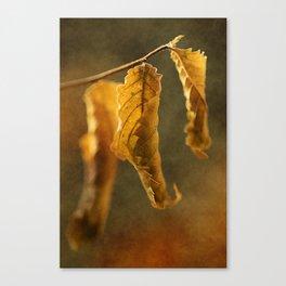 Autumn #5 Canvas Print