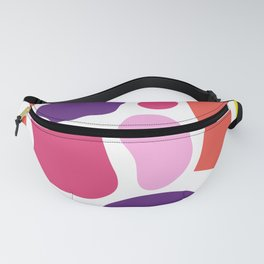 Pattern Play Fanny Pack