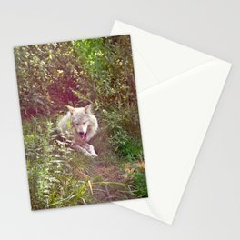 Wolf Relaxation Stationery Cards